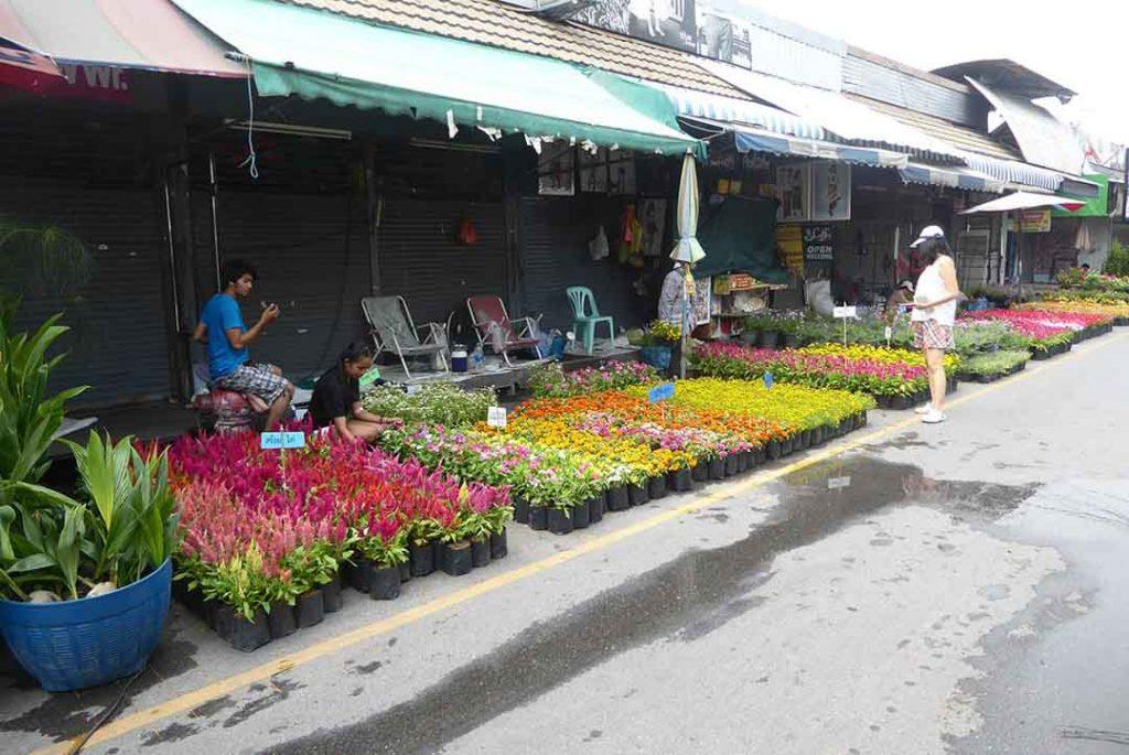 Where to buy flowers in Bangkok