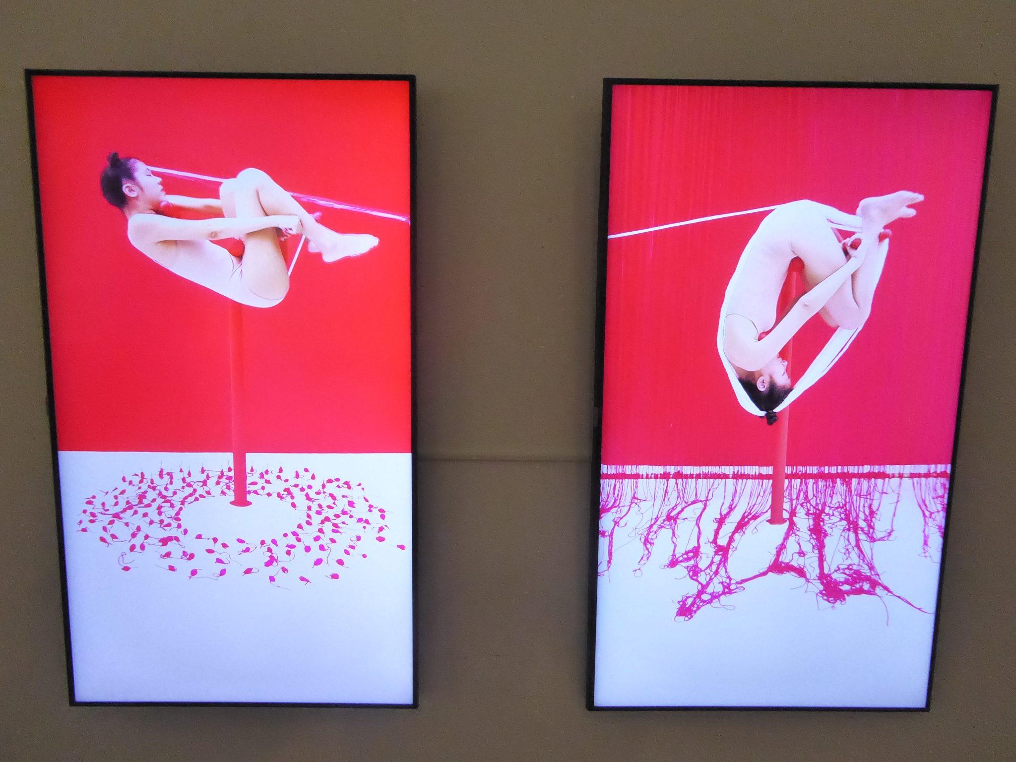 Kawita Vatanajyankur at Bangkok art biennale